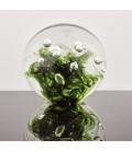 Aqua viventis  Těžítko koule křišťálové barevné 100 mm